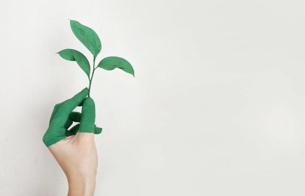 économiser de l'argent en vivant écologiquement